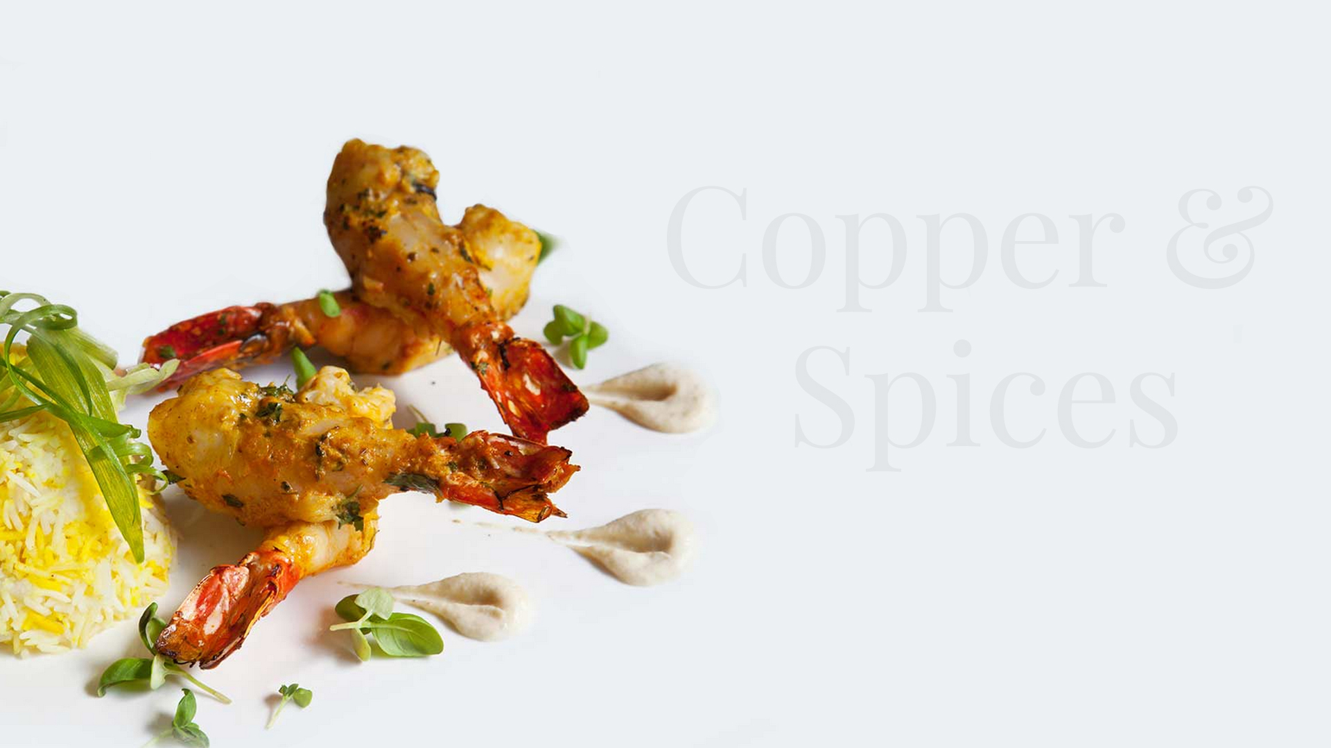 copper-and-spices-hero